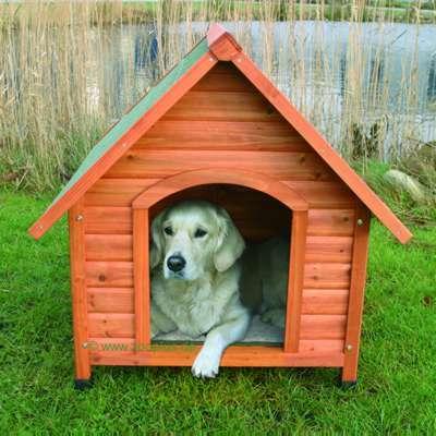 C mo hacer una caseta de perro animalesmascotas for Construir casa de perro