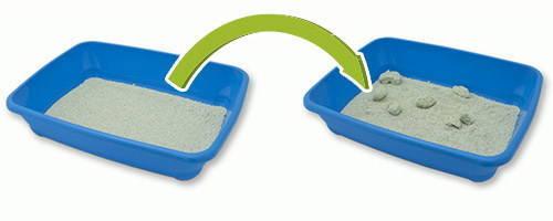 cajas-de-arena-para-gatos-arena-aglomerante