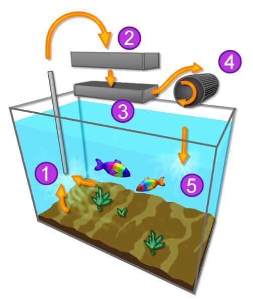 construir acuario