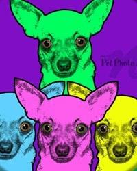 dog-pop-art
