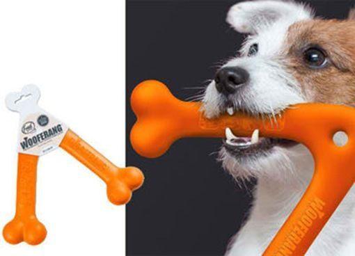 cachorro mordedor