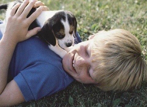 Cuidados especiales cachorros