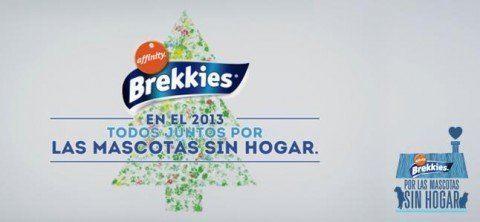 brekkies-2013