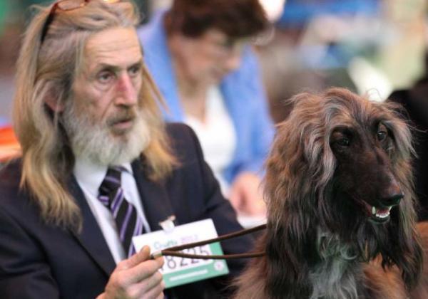 hombre igual a su perro