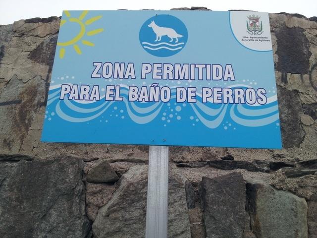 14-playas-para-ir-con-tu-perro