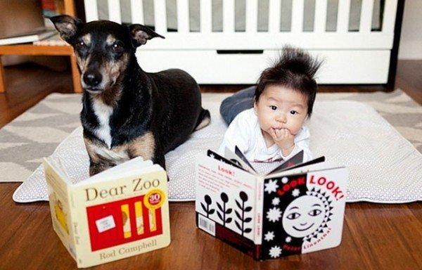 fotos-adorables-de-un-bebe-y-su-perro-hechas-por-la-madre-libro