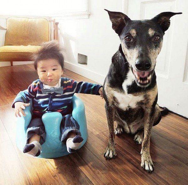 fotos-adorables-de-un-bebe-y-su-perro-hechas-por-la-madre-sentados