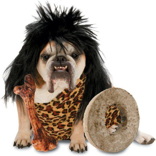 disfraz-perro-carnaval