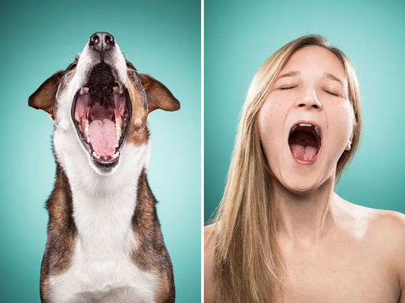 Se parecen los perros a sus dueños fotos de ines opifanti-sonrisa-boca-abierta