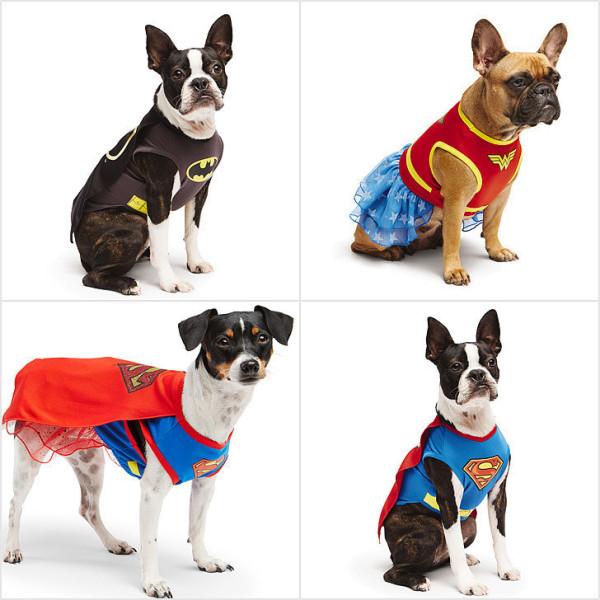 disfraces-para-perros-carnaval-2016