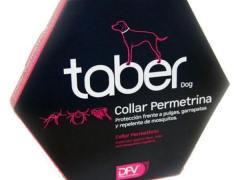 Los mejores collares antiparasitarios contra pulgas y garrapatas para perros
