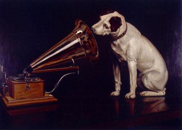 cancion para un perro