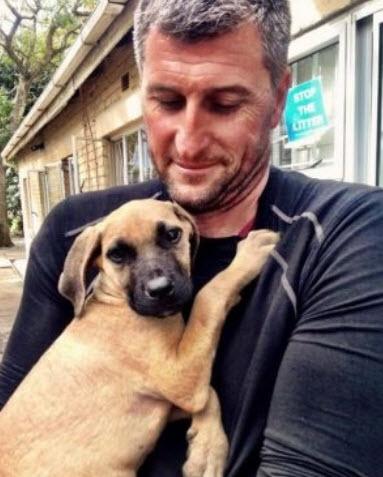 la-impresionante-transformacion-de-un-cachorro-de-3-meses-que-fue-encontrado-en-la-basura-enzo-con-latimer