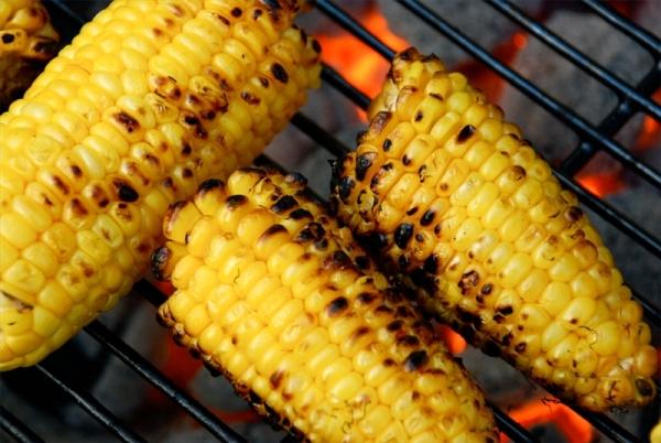10-alimentos-peligrosos-en-una-barbacoa-para-los-animales-domesticos-perros-y-gatos-mazorcas-de-maiz