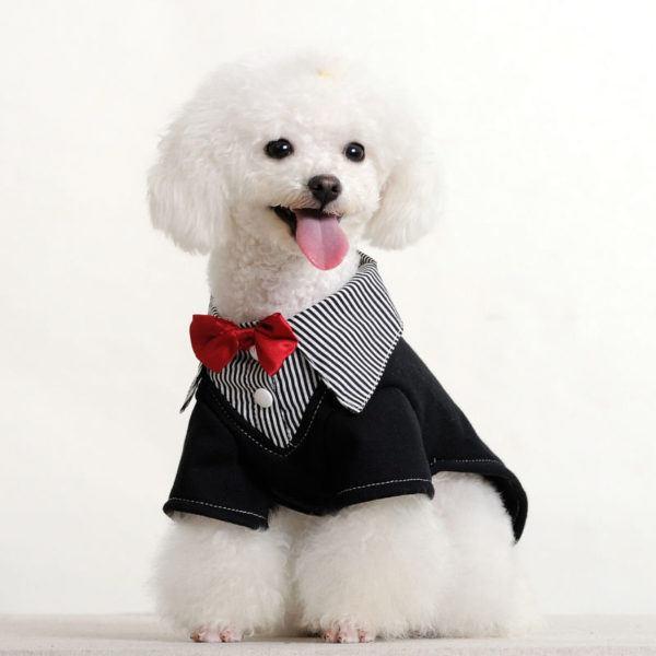 ropa-de-navidad-para-mascotas-traje