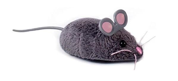 gato juguete raton