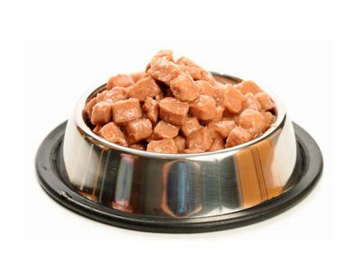 Tips para escoger la mejor comida para tu perro for Alimento para perros
