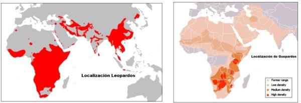 guepardos-localizacion-geografica