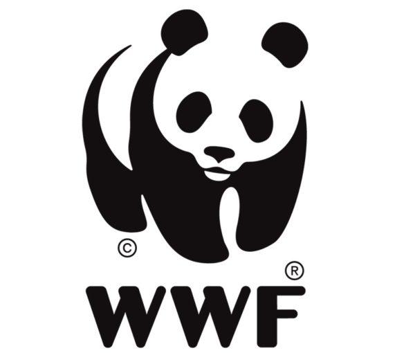oso-panda-wwf