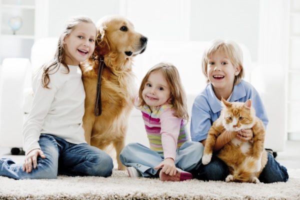 10-consejos-para-elegir-una-mascota-portada