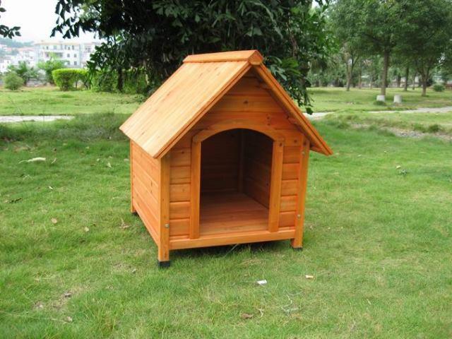 C mo hacer una caseta de perro animalesmascotas for Hacer caseta jardin