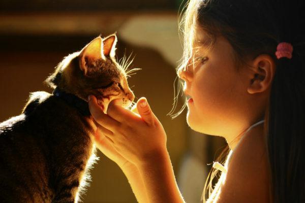 adopcion-compra-mascotas-navidad-nosonunjuguete