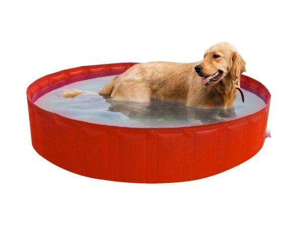 las piscinas de espa a en d nde se pueden ba ar con perros animalesmascotas. Black Bedroom Furniture Sets. Home Design Ideas