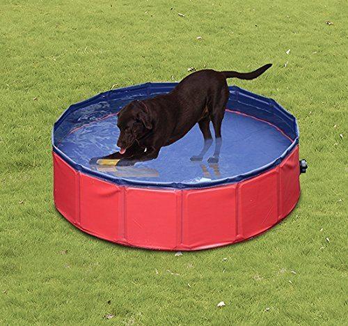 las piscinas de espa a en d nde se pueden ba ar con perros