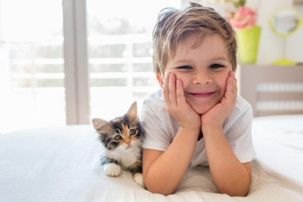Beneficios tener gato reduce alergias niños