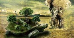 Sistemas de clasificación de los seres vivos