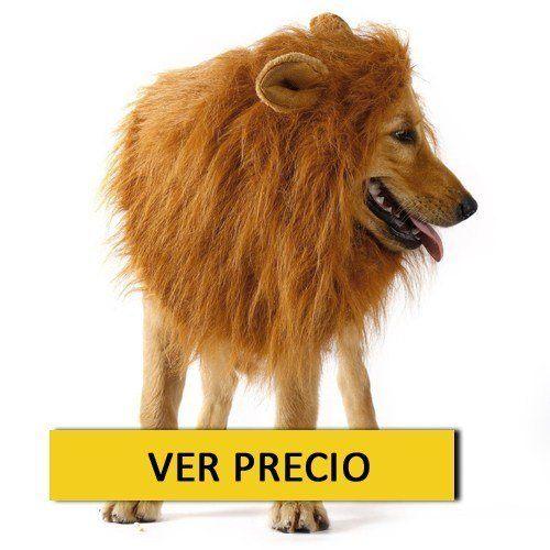 Disfraz Casero De Leon Disfraz Casero Para Hombre Excellent De Leon - Disfraz-casero-de-leon