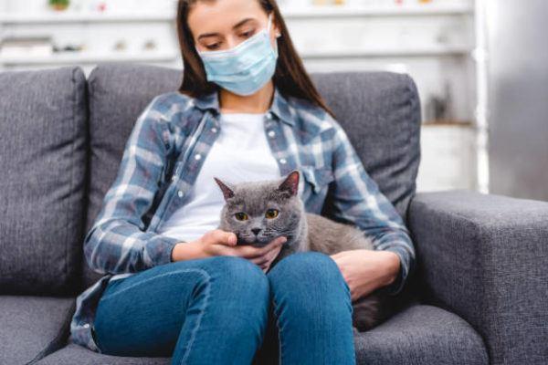Por qué los perros y gatos no pueden contagiar coronavirus